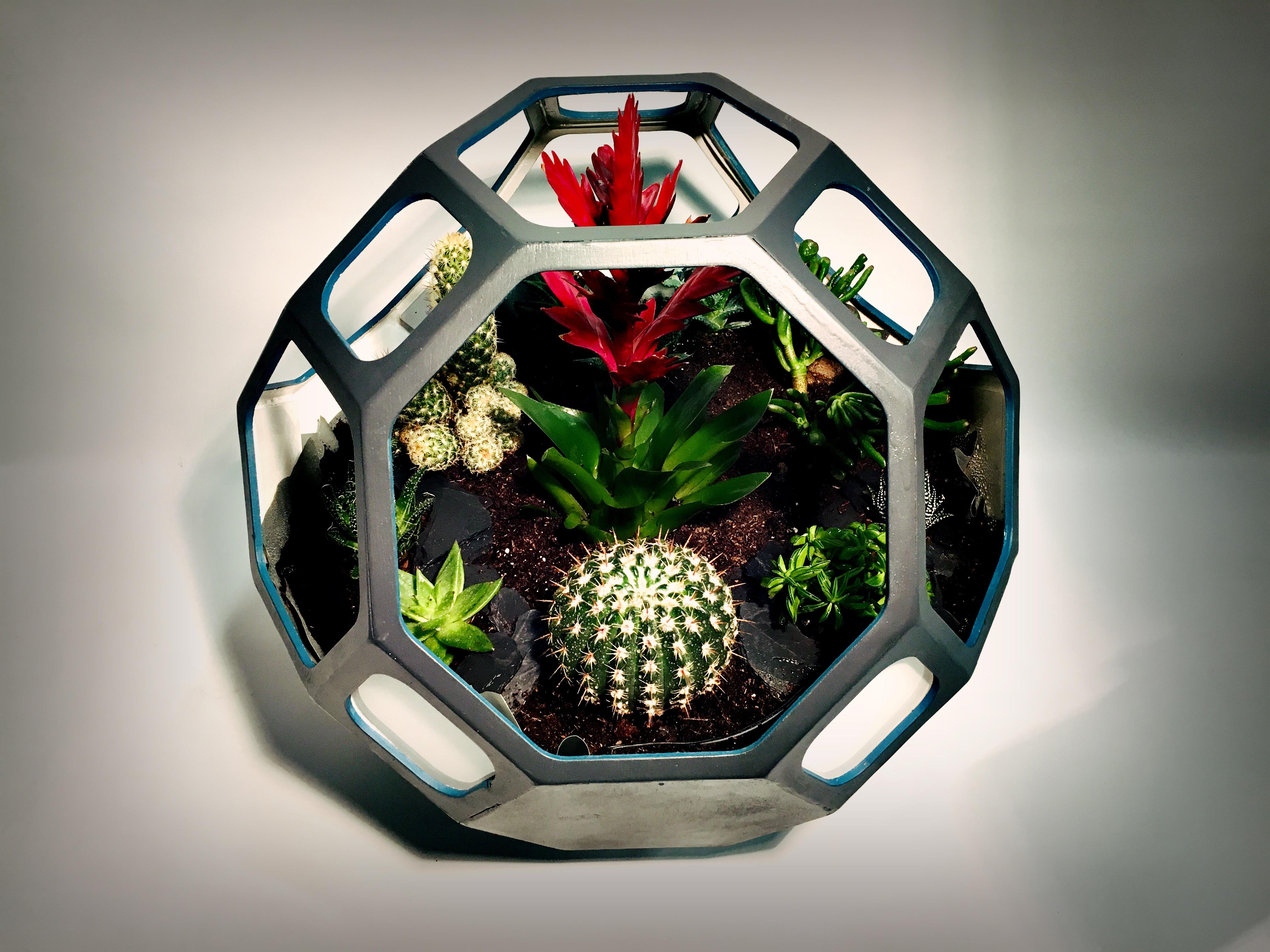 Météor - Terrarium - Design by Crayon Laser METEOR - TERRARIUM - CRAYON LASER.JPG