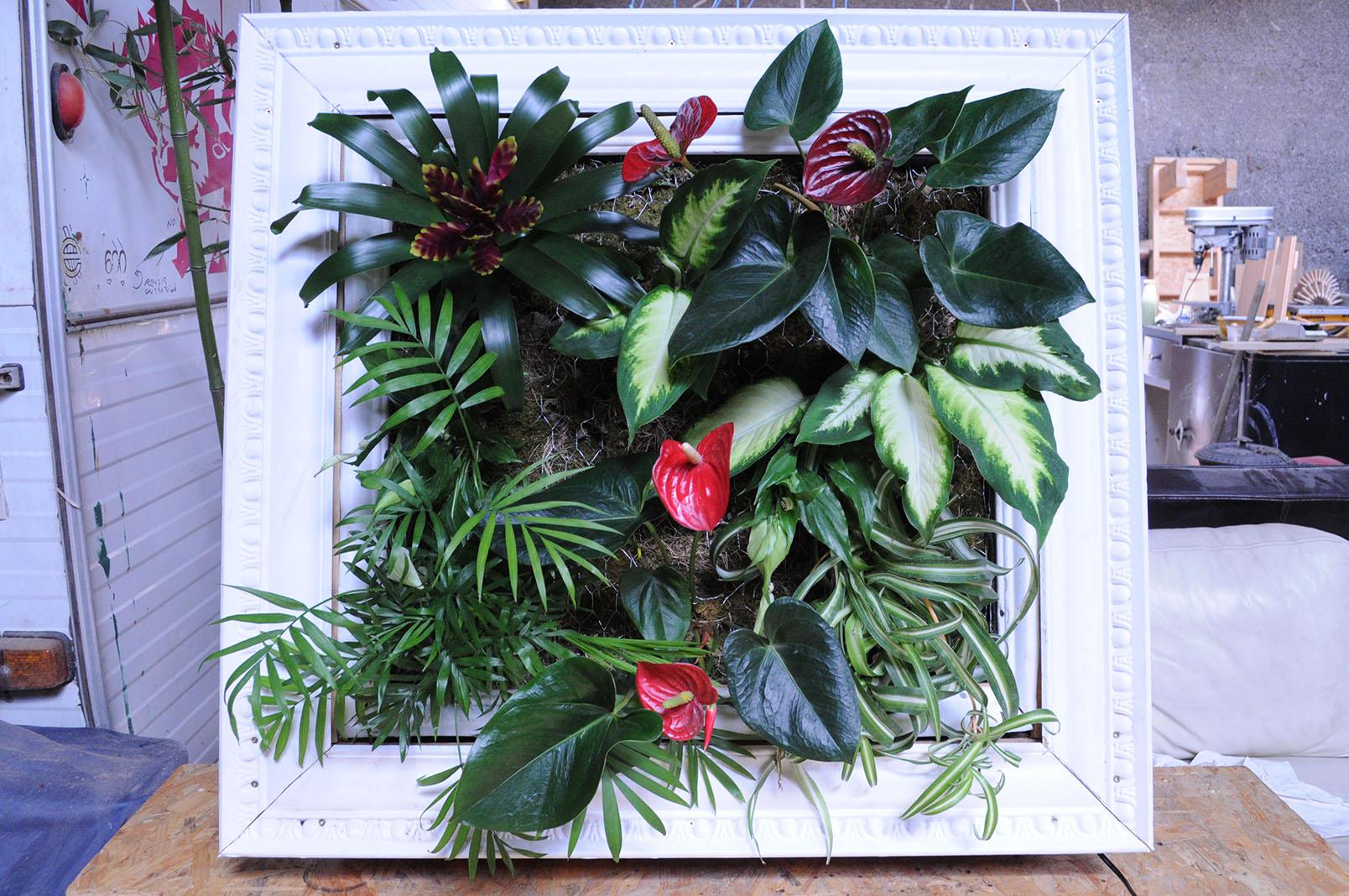 The_machine_à_plantes_DSC_18478.jpg