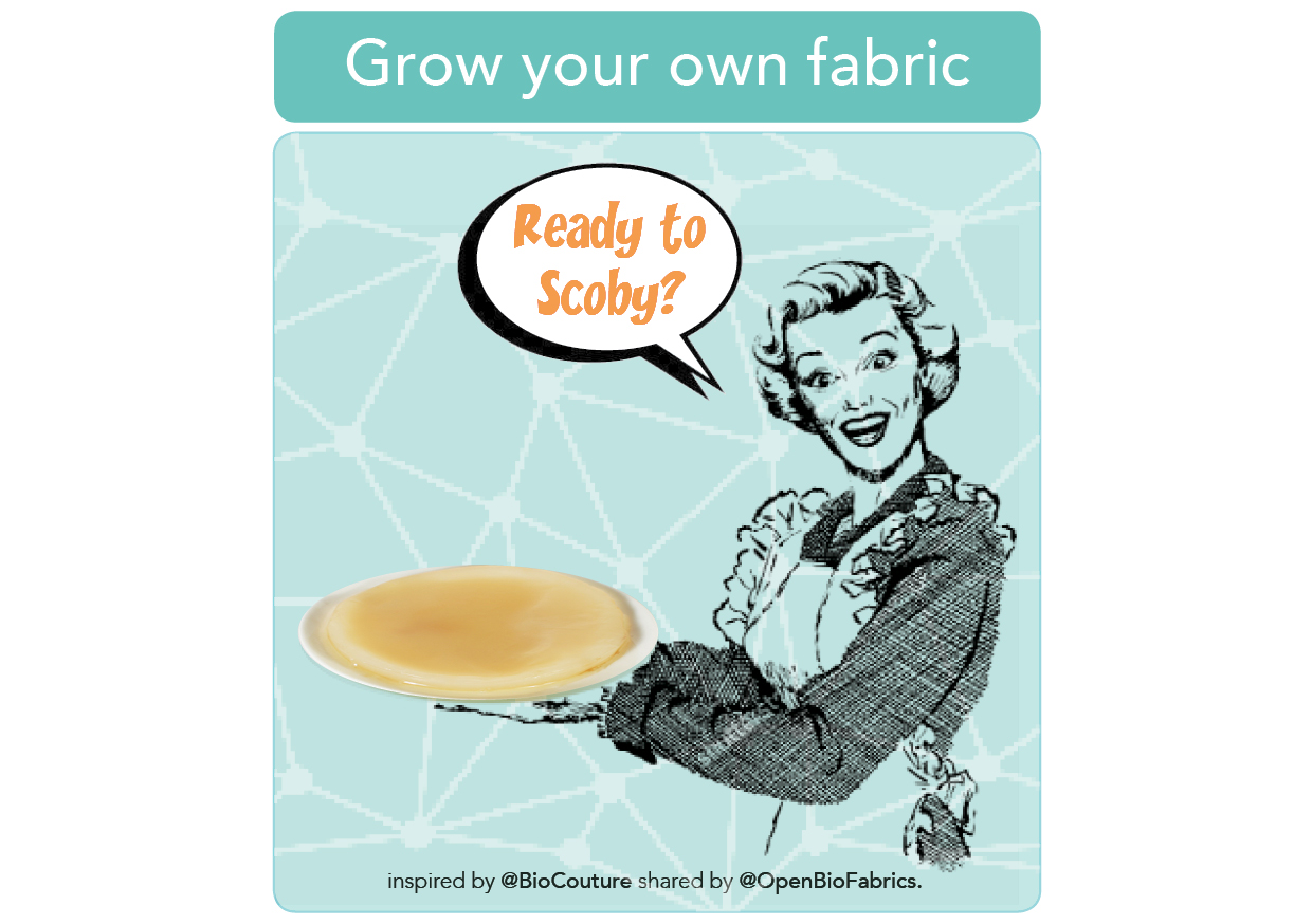 Grown your own fabric with bacteria image 1 wikifab.jpg